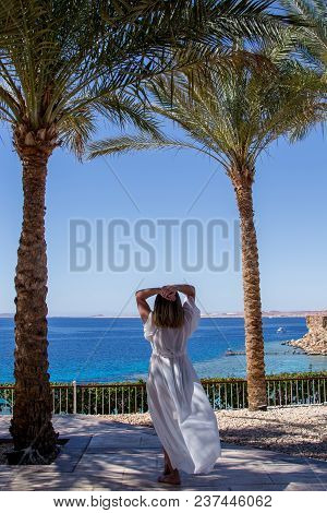 Luxurious Landscape With A Beautiful Caucasian Young Woman At The Red Sea Beach At Resort Sharm El S