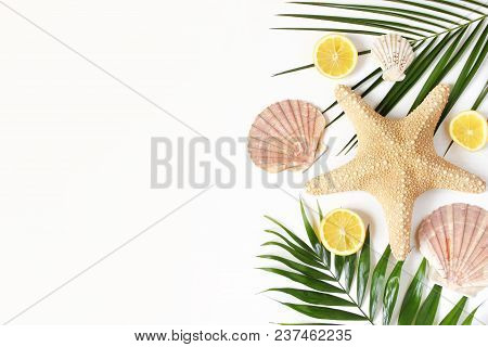 Composition Of Exotic Seashells, Oysters, Starfish And Lemons On Lush Green Palm Leaves Isolated On