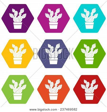 Prickly Pear Icons 9 Set Coloful Isolated On White For Web