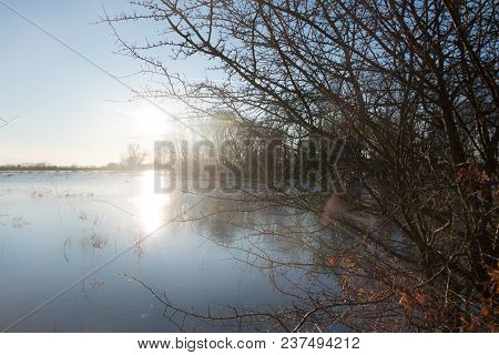 Flooded Rhine Near Wageningen In Gelderland With A Nice Silout Of The Trees And A Blue Sky