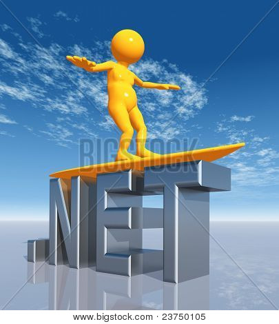NET Top Level Domain