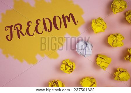 Word Writing Text Freedom. Business Concept For Going Out For A Vacation, Students Having Liberty To