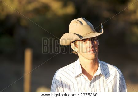 Day Dreaming Cowboy