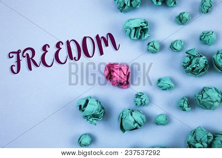 Conceptual Hand Writing Showing Freedom. Business Photo Text Going Out For A Vacation, Students Havi