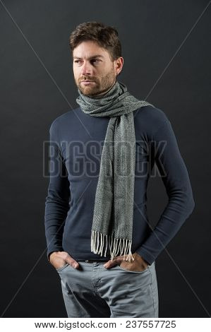 Macho In Sweater, Scarf With Hands In Pockets. Man With Beard On Unshaven Face On Grey Background. F