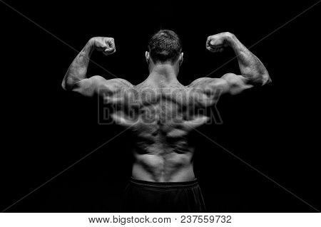 Sportsman Show Biceps And Triceps. Bodybuilder With Fit Torso, Back View. Man Athlete Flex Arm Muscl