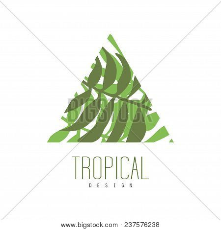 Tropical Logo Design, Triangle Badge With Palm Leaves Vector Illustration Isolated On A White Backgr