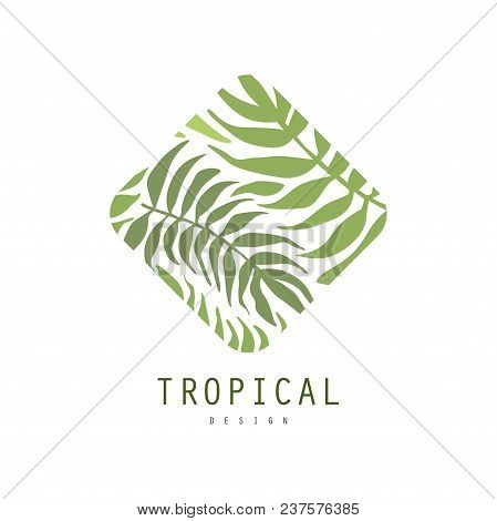Tropical Logo Design, Geometric Badge With Palm Leaves Vector Illustration Isolated On A White Backg