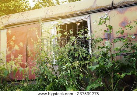 Abandoned Metal Trailer With Barred Window And High Grass