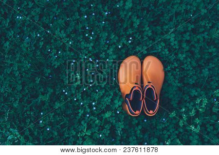 Womens Orange Rubber Boots Stand On A Meadow Overgrown With Clover, Top View