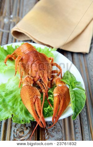 Whole cooked lobster with salad garnish on a plate
