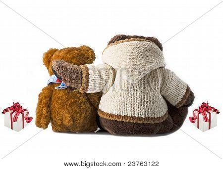 amigos del oso