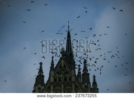 Birds And Gothic Church. Medieval Architecture, Dramatic Sight, Classy Style, Mystery Concept. Flock