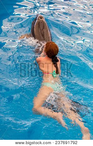 Young Happy Girl Swimming With Dolphin