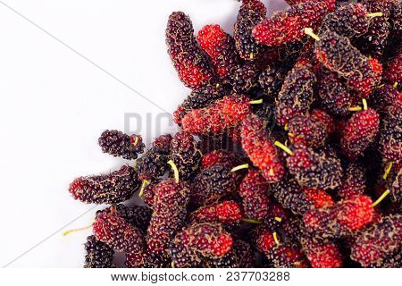 Ripe Mulberry Fruit   Is A Sweet And Sour Fruit On White Background Healthy Mulberry Fruit Food Isol