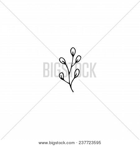 Vector Hand Drawn Object, Branch With Leaves. Feminine Logo Element, Romantic Floral Clipart. For Bu