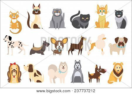Cartoon Collection Of Funny Cats And Dogs Of Different Breeds. Domestic Animals. Home Pets. Human S