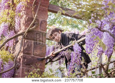 Teenager boy in a gazebo with a wisteria