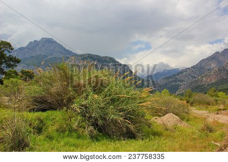 The View Of The Mountains, Over Which Hovered Clouds, View From The Plain In The Foreground, The Her