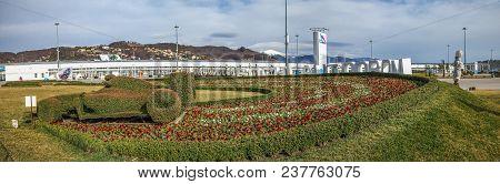 Adler, Sochi, Russia - February 25, 2017: Landscape Design.