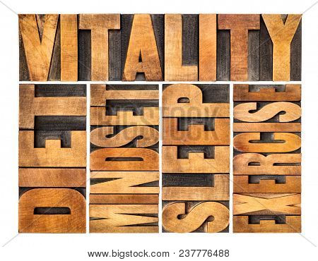 diet, sleep, exercise and mindset - vitality concept - isolated word abstract in vintage letterpress wood type printing blocks
