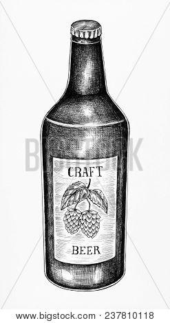 Hand-drawn craft beer bottle