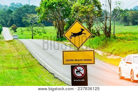Car Of The Tourist Driving With Caution During Travel At Asphalt Road Near Yellow Traffic Sign With