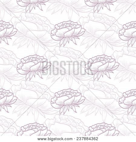Vector Seamless Pattern Of Peony Flowers, Hand Drawn Sketch, Isolated On White Background