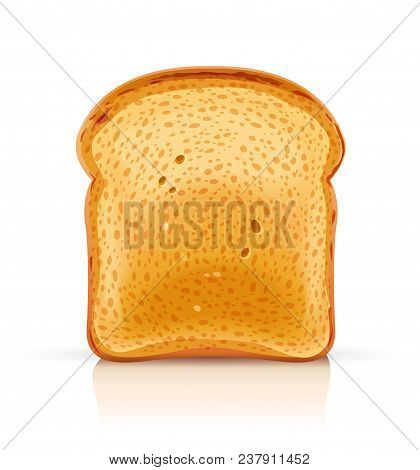 Bread Toast For Sandwich Piece Of Roasted Crouton. Lunch, Dinner, Breakfast Snack. Isolated White Ba