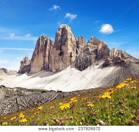 Drei Zinnen Or Tre Cime Di Lavaredo With Beautiful Flowering Meadow, Sextener Dolomiten Or Dolomiti