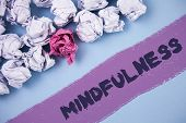 Word writing text Mindfulness. Business concept for Being Conscious Awareness Calm Accept thoughts and feelings written Painted background Crumpled Paper Balls next to it. poster