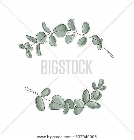 Vector Eucalyptus Leaves Frame On White Background With Place For Your Text. Wreath Made Of Leaf Bra