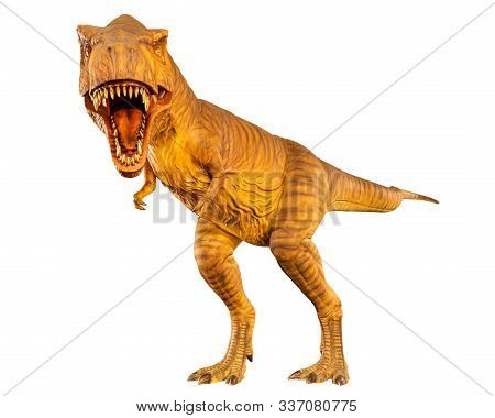 Tyrannosaurus Rex ( T-rex ) Is Walking And Open Mouth . Front View . White Isolated Background . Din