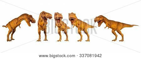 Tyrannosaurus Rex ( T-rex ) Is Walking And Snarling . Set Of Various Dinosaur Posture . White Isolat