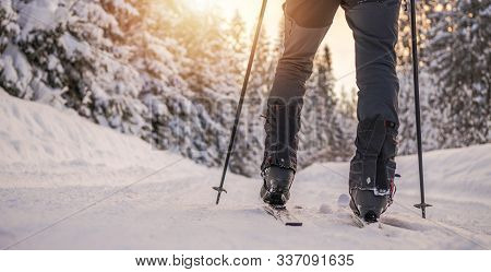 Colorado Cross Country Skiing Winter Sport And The Winter Wonderland.