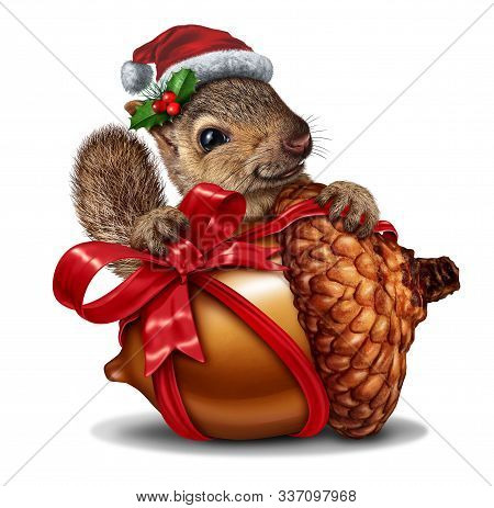 Christmas Squirrel Gift As A Funny And Cute Animal Holding A Giant Acorn Tree Nut With A Red Festive