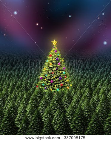 Christmas Tree Greeting Card Concept As A Dense Forest Of Pine With One Individual Plant Decorated W