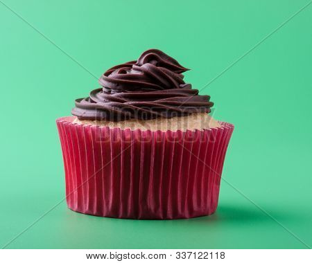 Delicious Homemade Sweet Vanilla Cupcake With Chocolate Icing, Green Background