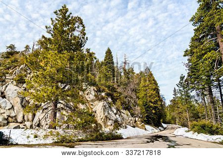 The Giant Sequoia National Monument In Sequoia National Forest - California, United States