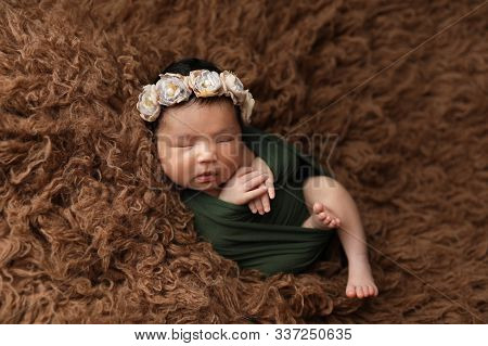 Scarlet Newborn Asian Girl On Brown Fur With Folded Arms With Floral Ornament On Her Head. First Pho