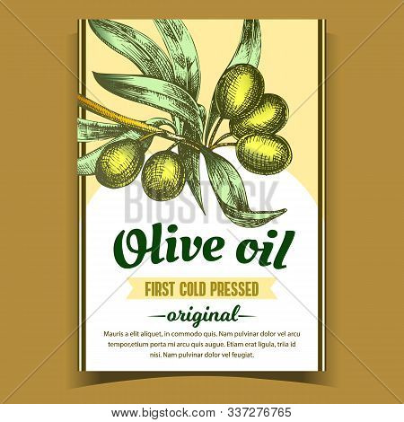 Olive Extra Virgin Organic Product Label Vector. Farming Greece Culture And Green Leaves On Bottle S