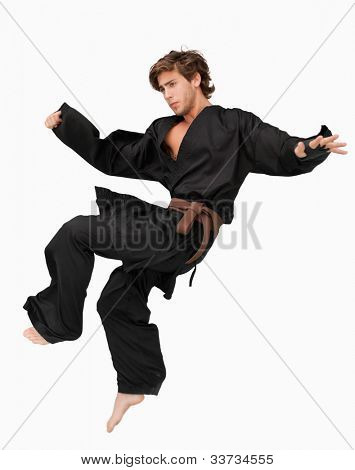 Martial arts fighter performing a jump kick against a white background