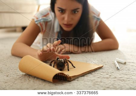 Young Woman And Tarantula On Carpet. Arachnophobia (fear Of Spiders)