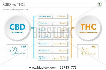 Cbd Vs Thc Medical Applications Horizontal Infographic Illustration About Cannabis As Herbal Alterna