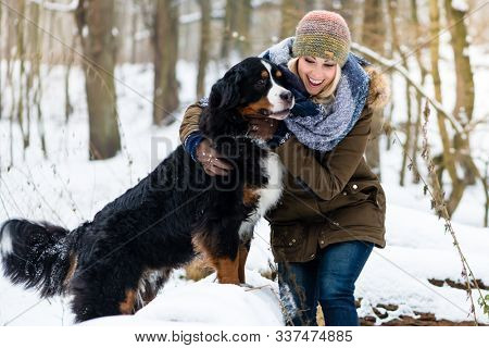 Woman walking her dog in the winter and both explore the snow together in playful mood