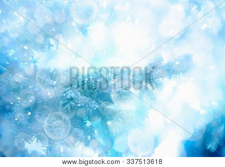 Christmas tree in snow, background with fir branches. Christmas and New Year holidays background with bokeh.