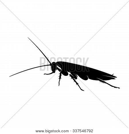 Cockroach Logo Design Vector Illustration. Cockroach Design Template