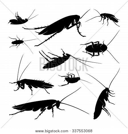 Set Of Cockroach Logo Design Vector Illustration. Cockroach Design Template