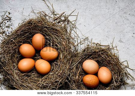 Chicken Eggs In Wicker Nests In Chicken Coop Top View. Natural Organic Eggs In The Hay. Fresh Chicke