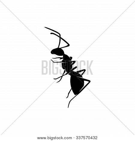 Ant Vector Design Logo. Ant Illustration With Various Shapes And Different Movements